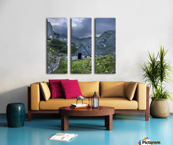 Shelter  Split Canvas print