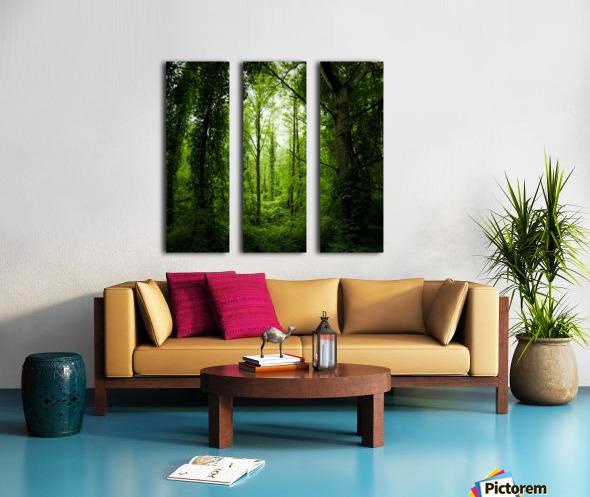 Pure oxygen  Split Canvas print