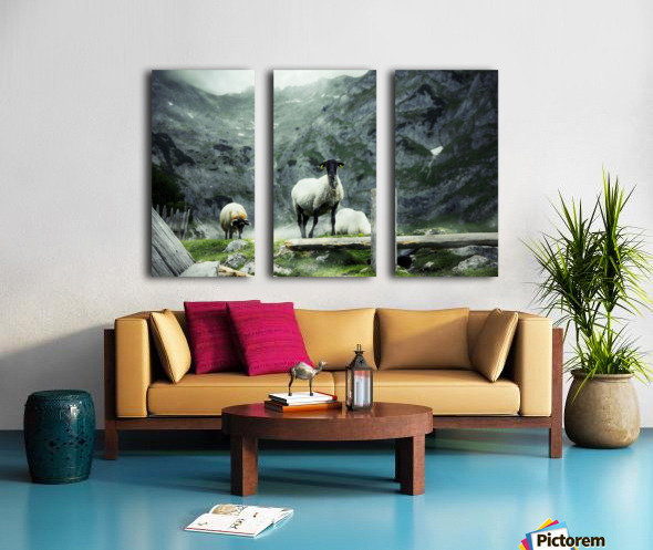 Our white Split Canvas print