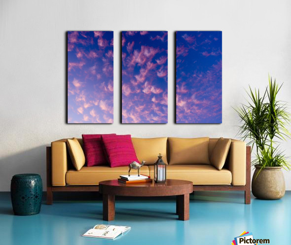 Pink and White Cotton Candy Skies over the Pacific Northwest   Abstract Expressionist Robert Stanek Original Split Canvas print