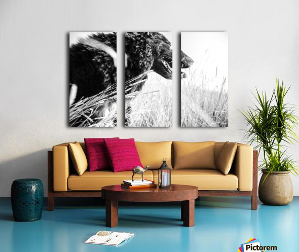 Wild days Split Canvas print