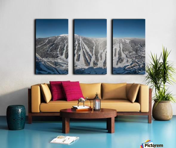 Groomer s Choice Split Canvas print