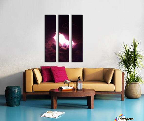 Fired Split Canvas print