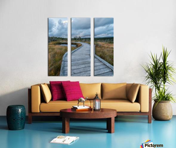 Autumn Walk - 2 Split Canvas print