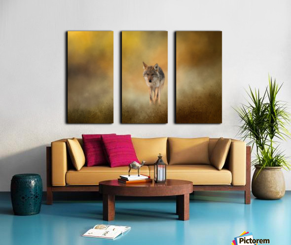 Strolling Coyote Split Canvas print