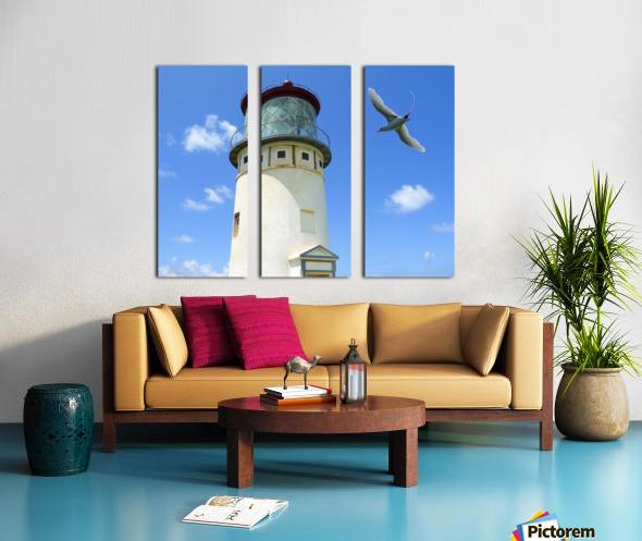 Kilauea Lighthouse and Wildlife Refuge on Kauai Split Canvas print