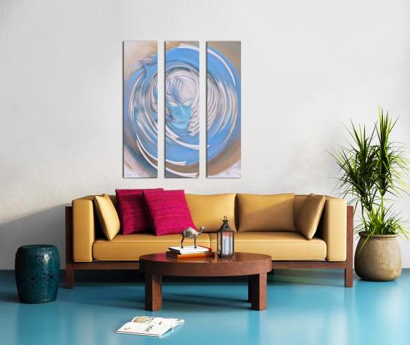 Dream or Spirit Split Canvas print