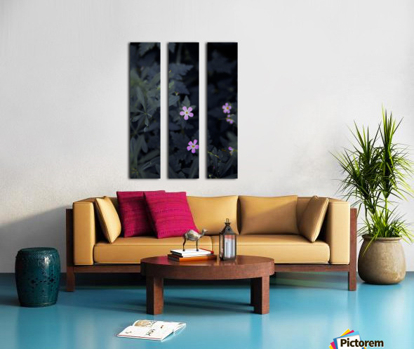 Under Moon light Split Canvas print