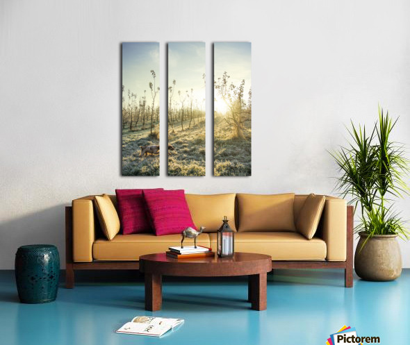 In search Split Canvas print