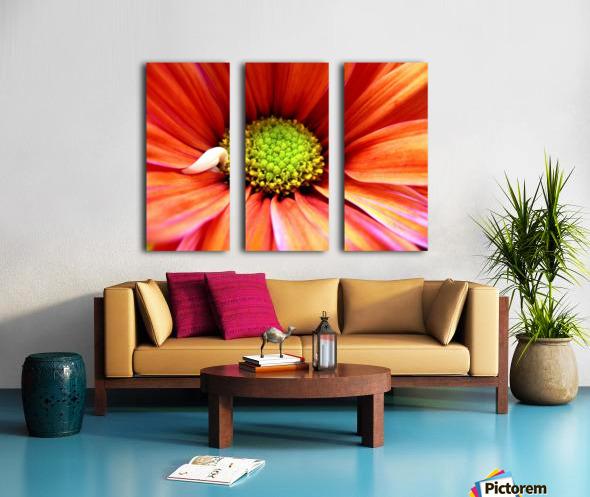 Colorful Split Canvas print