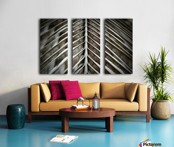 Nature - 16 Split Canvas print