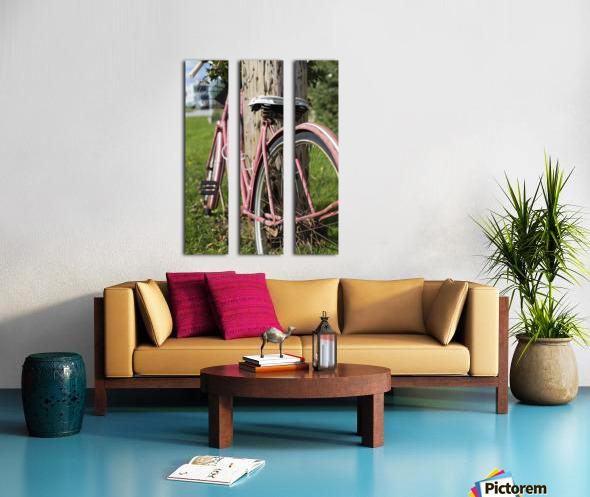 Bicycle Split Canvas print