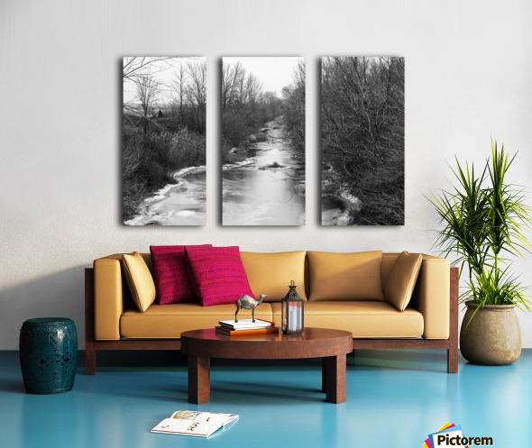 Frozen Wetlands Split Canvas print