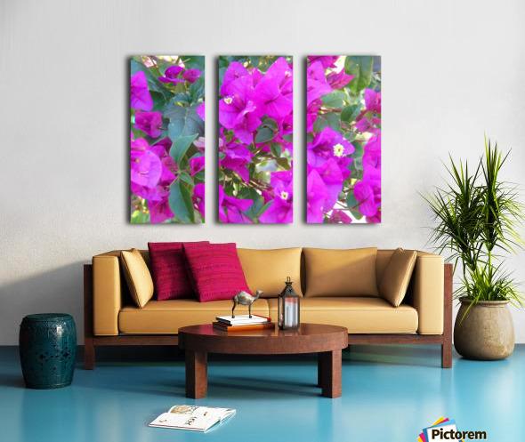 Purple Fusion Split Canvas print