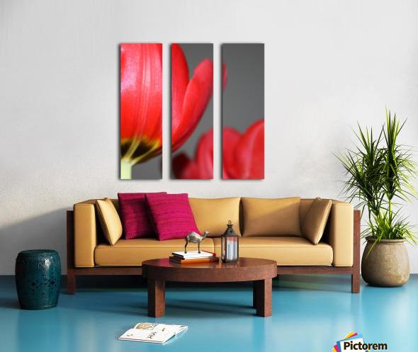 Tulips Split Canvas print
