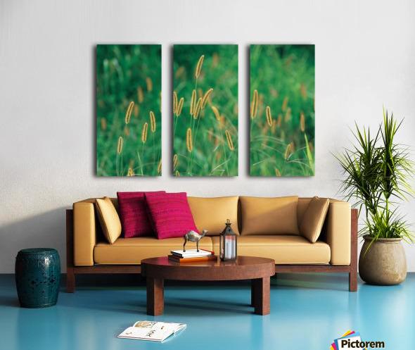 landscape_2_0157 Split Canvas print