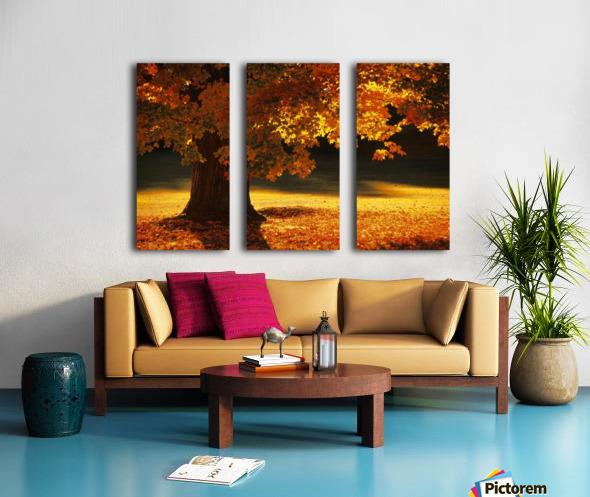 landscape_2_0386 Split Canvas print