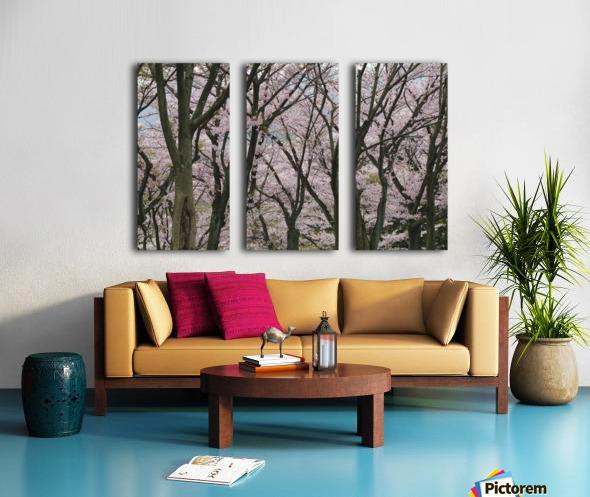 landscape_2_0949 Split Canvas print