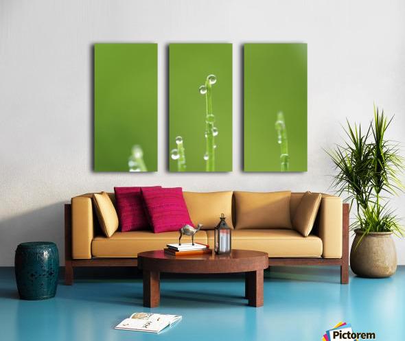landscape_2_0986 Split Canvas print