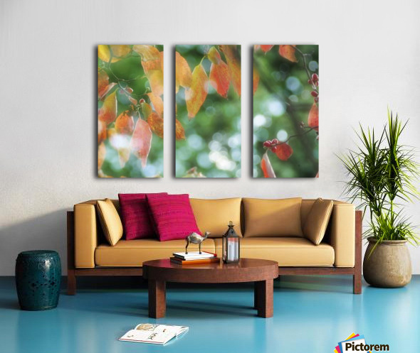 landscape_2_1026 Split Canvas print