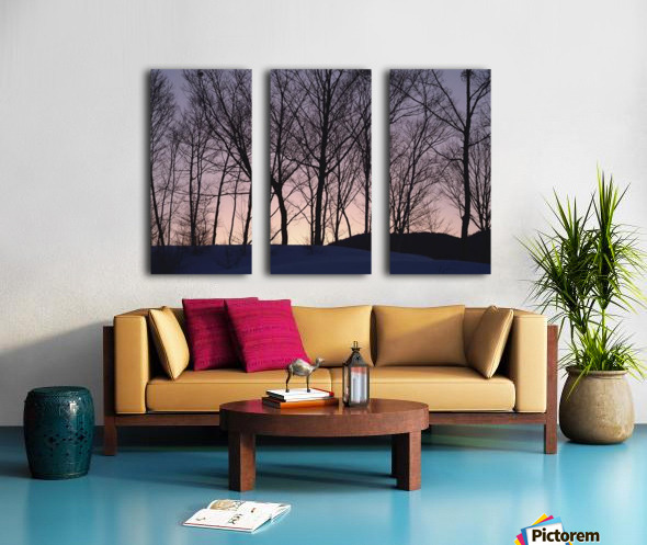 landscape_2_1031 Split Canvas print