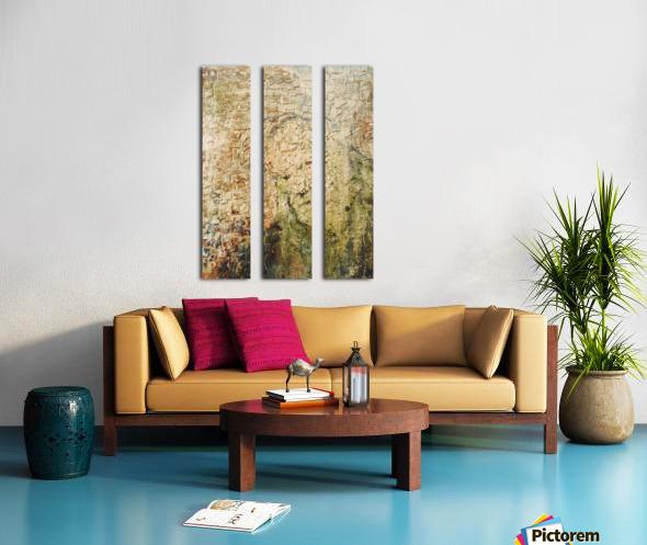 Immemorial Split Canvas print