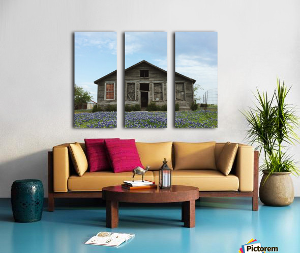 Blue Bonnet Shack Split Canvas print