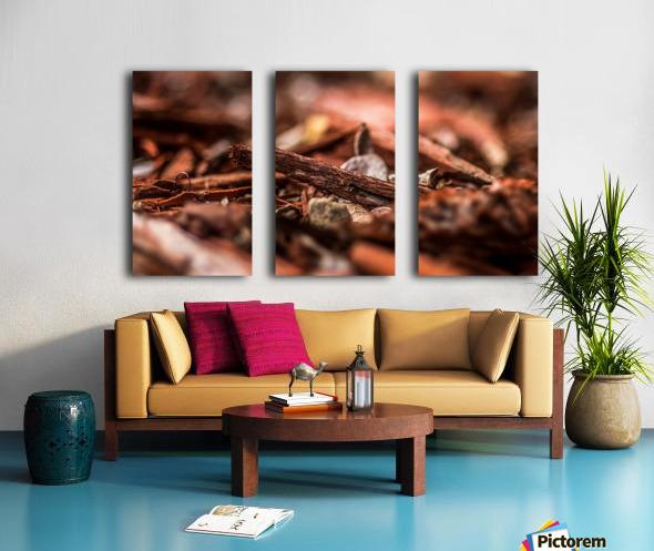Wood Chips Split Canvas print