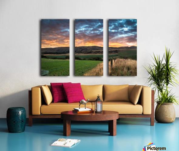 Morning Glory Split Canvas print