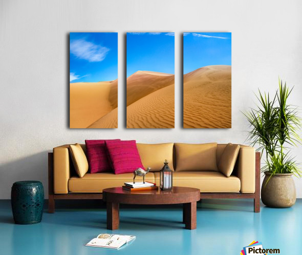 Windswept Split Canvas print