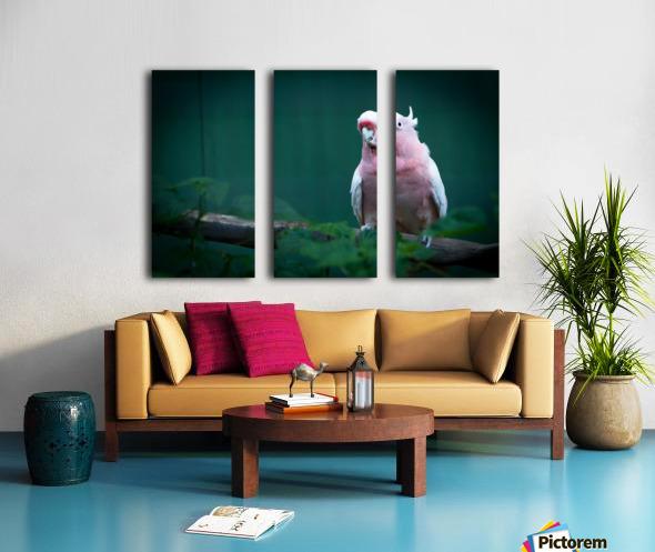 Nature and Birds 14 Split Canvas print