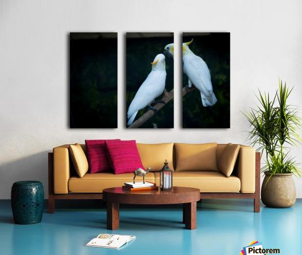 Nature and Birds   15 Split Canvas print