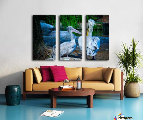 Nature and Birds   9 Split Canvas print