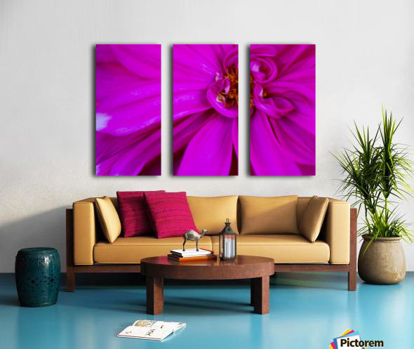 Nature and Flowers 5 Split Canvas print