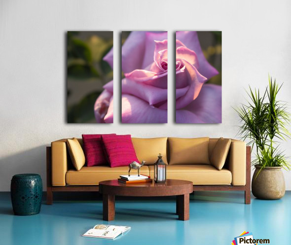 Nature and Flowers 6 Split Canvas print