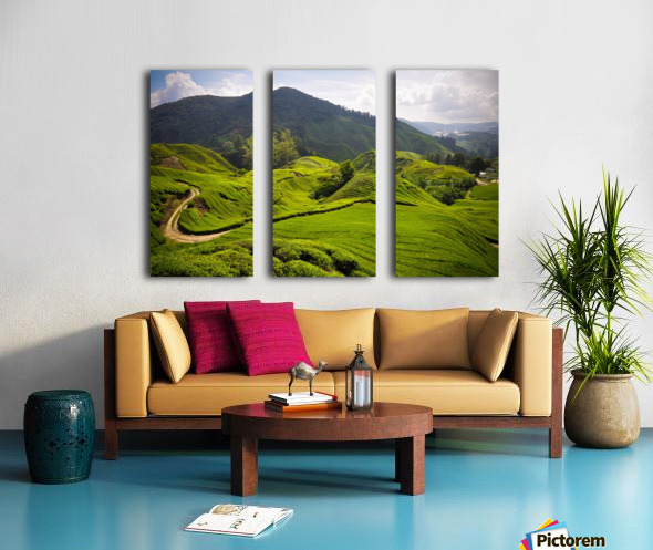 Tea plantations, Malaysia Split Canvas print