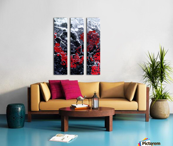 Red Cliff Split Canvas print