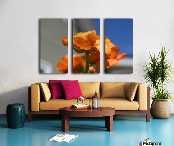 Spring in Bloom Split Canvas print