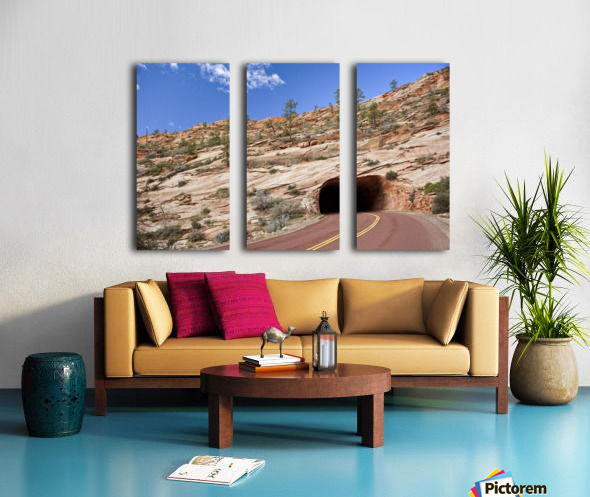 Zion Park Tunnel Split Canvas print