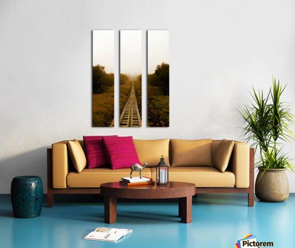 Washington Mount Split Canvas print