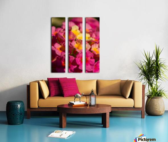 flowers 1 Split Canvas print