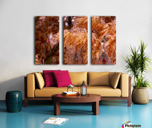Maple Leaves Split Canvas print