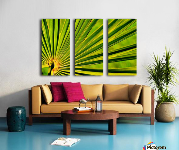 PALM-TREE LEAF 1 Split Canvas print