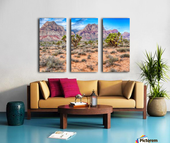 JoshuaTree Split Canvas print
