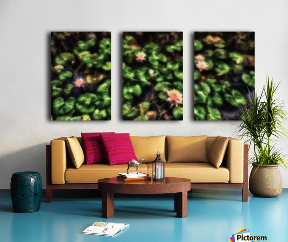 Lillypad Split Canvas print
