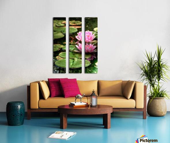 Rosewater Split Canvas print