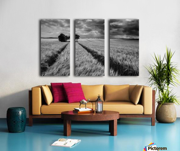 Field Shapes 2 Split Canvas print