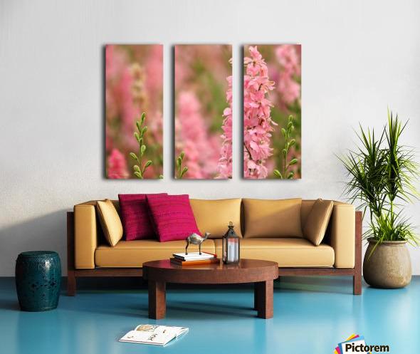 Dreamy Split Canvas print
