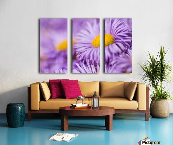 Beautiful summer background Split Canvas print