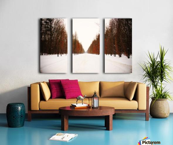 Snowy winter road Split Canvas print